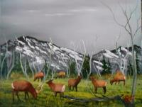 Wildlife - Feeding  Elk - Oils