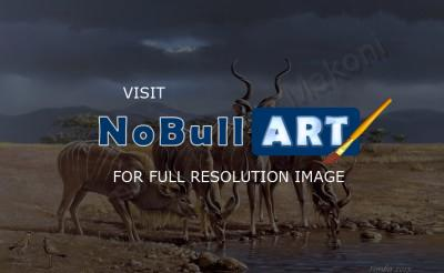 Wildlife And Nature Art - The Kudus - Oil On Canvas