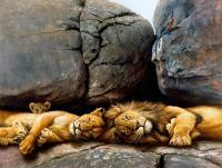 Resting Pride - Oil On Canvas Paintings - By Simba   Robert Makoni, Oils Painting Artist