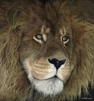 Wildlife And Nature Art - The Lion King - Oil On Canvas