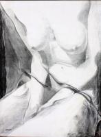 Nudes - Nude With Veil - Pencil On Canvas