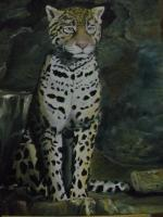 Animals - Snow Leopard - Acrylic On Canvas