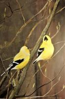 Birds - Pair Of Goldfinches - Acrylic On Board