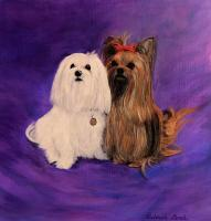 Animals - Pair Of Fur Babies - Acrylic On Stretched Canvas