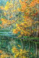 Autumn Reflections - Digital Photography - By Ronald Williams, Digitally Enhanced Photography Artist