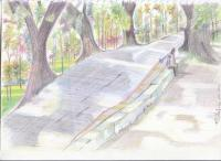 Landscape - Dc Hill Park Chittagong - Pencil  Paper