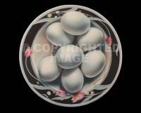 Food - Eggs In The Round - Acrylic On Canvas