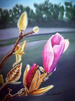 Magnolia Bud - Watercolor Paintings - By Artist Irina Sztukowski, Realism Painting Artist