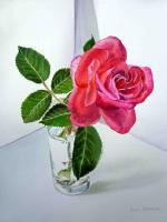 Pink Rose - Watercolor Paintings - By Artist Irina Sztukowski, Realism Painting Artist