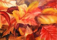Available_Holidays - Fall Leaves - Watercolor