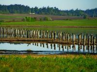 Clear Calm Coupeville - Digital Photography - By John Davis, Nature Photography Artist