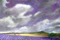 2010 Artworks - Lavender In The Sky And Land - Acrylic On Gallery Canvas
