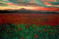 2012 - Poppies Fields In Tibet - Acrylic On Gallery Canvas
