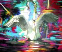 2015 - Swan Abstract - Acrylic On Gallery Canvas