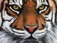 Jungle Knight - Acrylic Paintings - By Diane Deason, Realistic Painting Artist