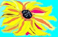 Add New Collection - Sunny Flower - Oil And Canvas