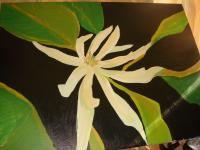 Landscape - Asian Jasmine With Green Leaves - Acrylic