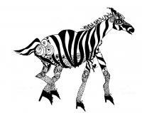 Ink Drawings - Zebra - Pen And Ink