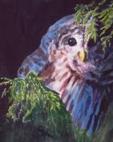 Bashful Barred - Watercolor Paintings - By Gaylen Whiteman, Impressionistic Realism Painting Artist
