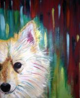 Animal Expressions - A Pomeranian Sold - Acrylic