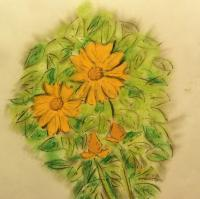 Crusin The Gulf - Flower Of Belize - Pastels