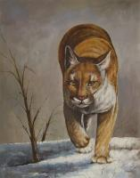 Animals - Bobcat - Oil On Canvas