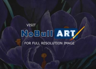 Still Life - Crocus - Medium On Canvas - 70 X 50 Cm