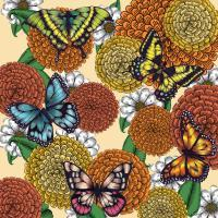 Flowers And Butterflies - Photoshop Drawings - By Janelle Dimmett, Illustration Drawing Artist