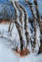Landscapes - Trees In Winter - Watercolor On Rice Paper