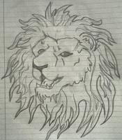 Drawing - African Lion - Pencil
