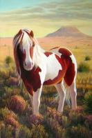 Southwest Wild Paint Pony - Acrylic On Canvas Paintings - By Charles Wallis, Realism Painting Artist