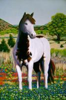 Texas Hill Country Stallion - Acrylic On Canvas Paintings - By Charles Wallis, Realism Painting Artist