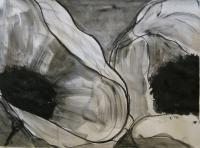 Charcoal Poppies 3 - Wet Charcoal Drawings - By Helen Gallaway, Contemporary Drawing Artist