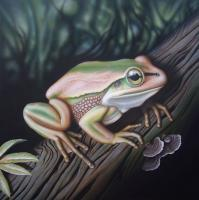 Green  Gold Bell Frog - Acrylics And Pigmented Ink Paintings - By Dallas Nyberg, Realism Painting Artist