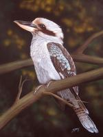 Blue Winged Kookaburra - Acrylics And Pigmented Ink Paintings - By Dallas Nyberg, Realism Painting Artist