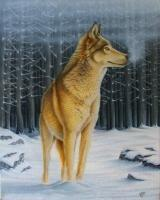 Recent Work - Forest Wolf - Wicked Acrylics
