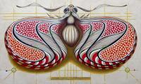 Animals - Fibonacci Butterfly - Oil On Paper