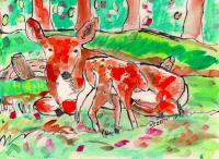 Wildlife - Deer And Woods - Watercolor