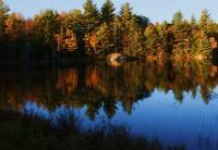Fall Reflections - Enhanced Digital Photography - By Lois Lepisto, Natureweather Photography Artist